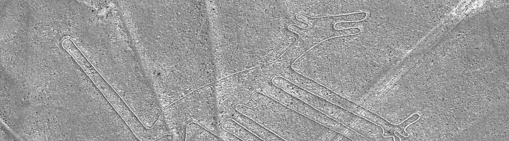Nazca-Hund_1260x350